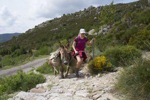 Ein Kind und ein Esel gehen einen Felsweg hinauf.