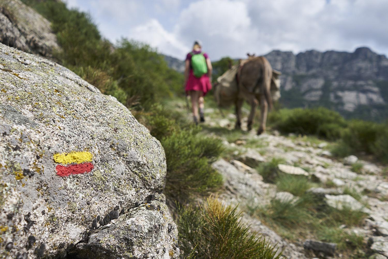 Wandern nach dem Eselprinzip: Immer mit der Ruhe