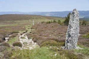 Wanderweg in den Sevennen mit einem Steinpfeiler rechts.
