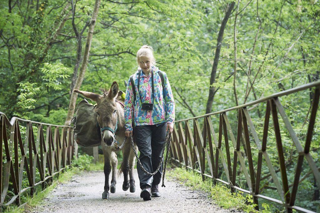 Fotogrsafie beim Wandern: Ein Mädchen führt einen esel über eine Brücke